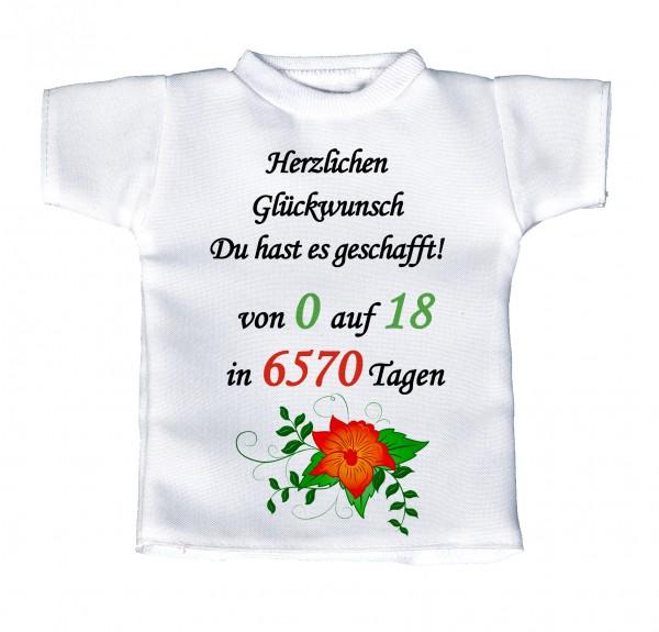 Herzlichen Glückwunsch Du hast es geschafft! Von 0 auf 18... - Mini T-Shirt, Flaschenshirt, Autofensterdekoration, weiß mit aussagekräftigen Spruch